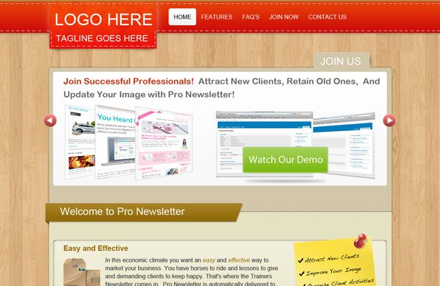 Pro Newsletter: Free PSD Website Template for Online Business ...