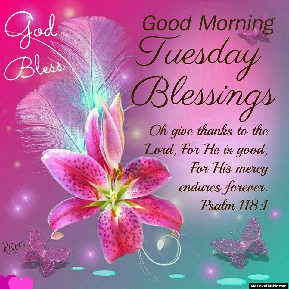 Good morning!  I pray you have a blessed Tuesday today. Amen.