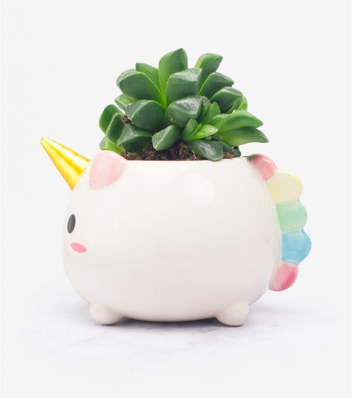 """Pot de fleurs """"Elodie la Licorne"""""""