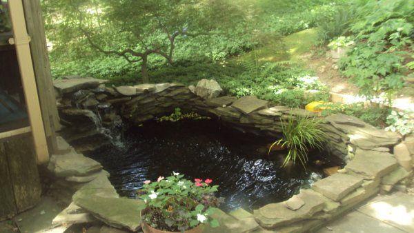 <b>Aquarium</b> Guy: <b>Garden</b> Pond Services