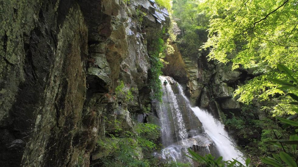 Most Amazing Hikes in Every State (PHOTOS North carolina