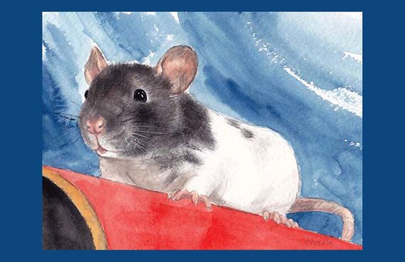 Pip The Baby Rat By Drusilla On Etsy 3 00 Pet Rats Cute