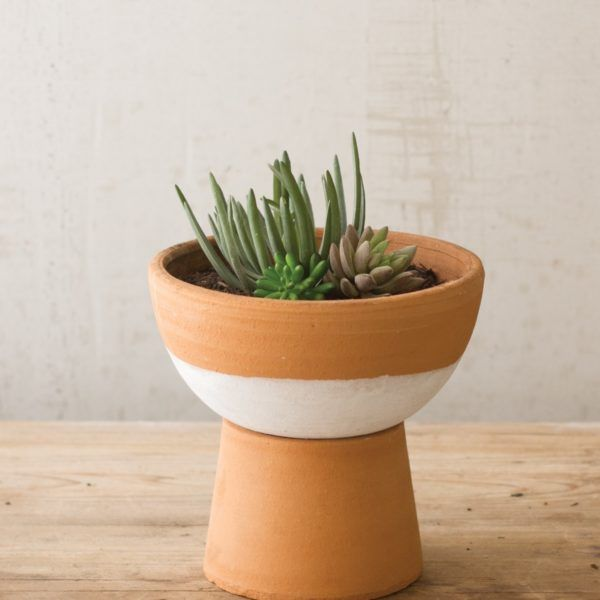 Compote Terracotta Pot With Base Color