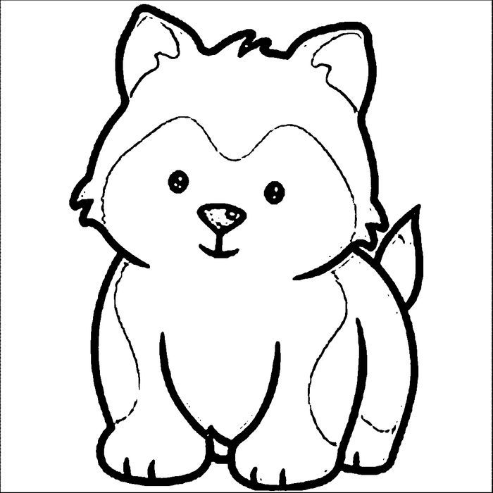 Husky Coloring Pages Pdf Free Coloring Sheets