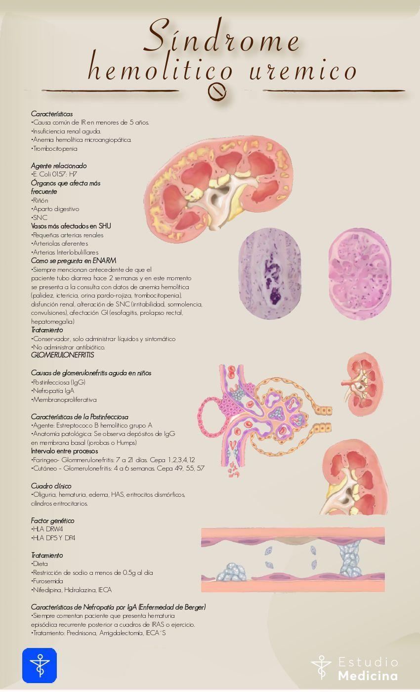 síndrome de uremia hemolítica fisiopatología de la diabetes