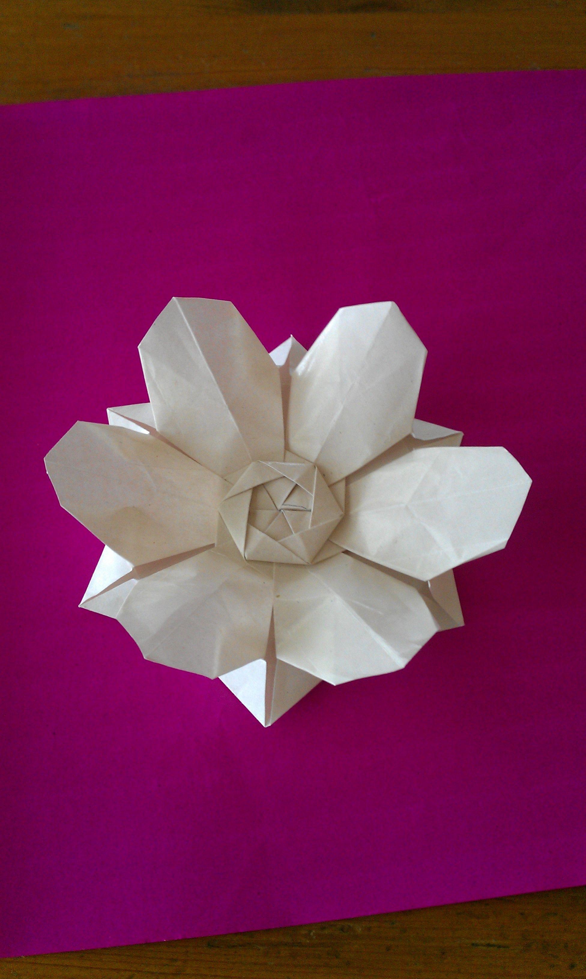 My attempt at david martinez six petal origami field flower i my attempt at david martinez six petal origami field flower i added some mightylinksfo