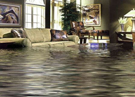 Aladdin S Carpet Cleaning In Buffalo Ny Is The Place You Can Rely On For Professional