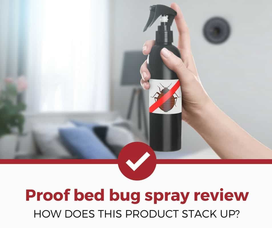 Proof Bed Bug Spray Review Bed Bug Spray Bed Bugs Bed Bug Control