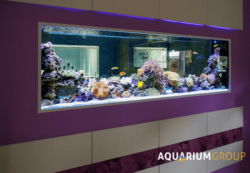 Large Luxury Marine Aquarium For The Home Aquarium Fish Tank Design Aquarium Fish Tank
