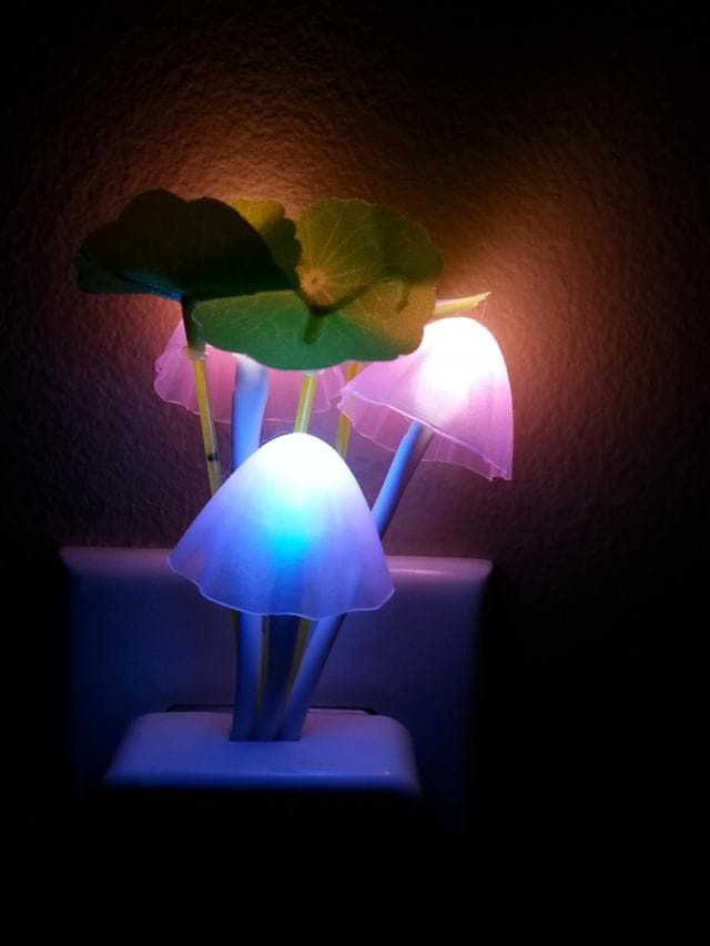 Creative Romantic Colorful Ombre Sensor LED Lotus Leaf Decor ...