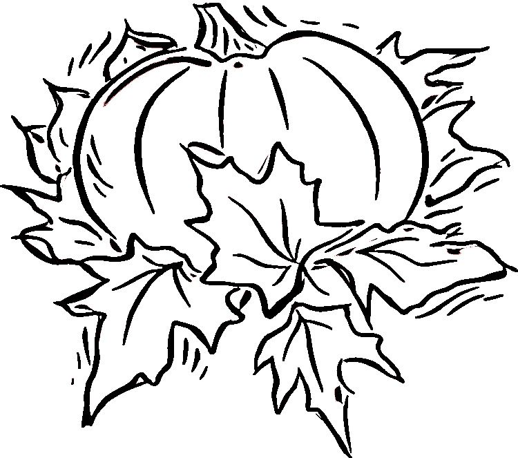 Fall coloring pages | Fall coloring pages, Pumpkin ...