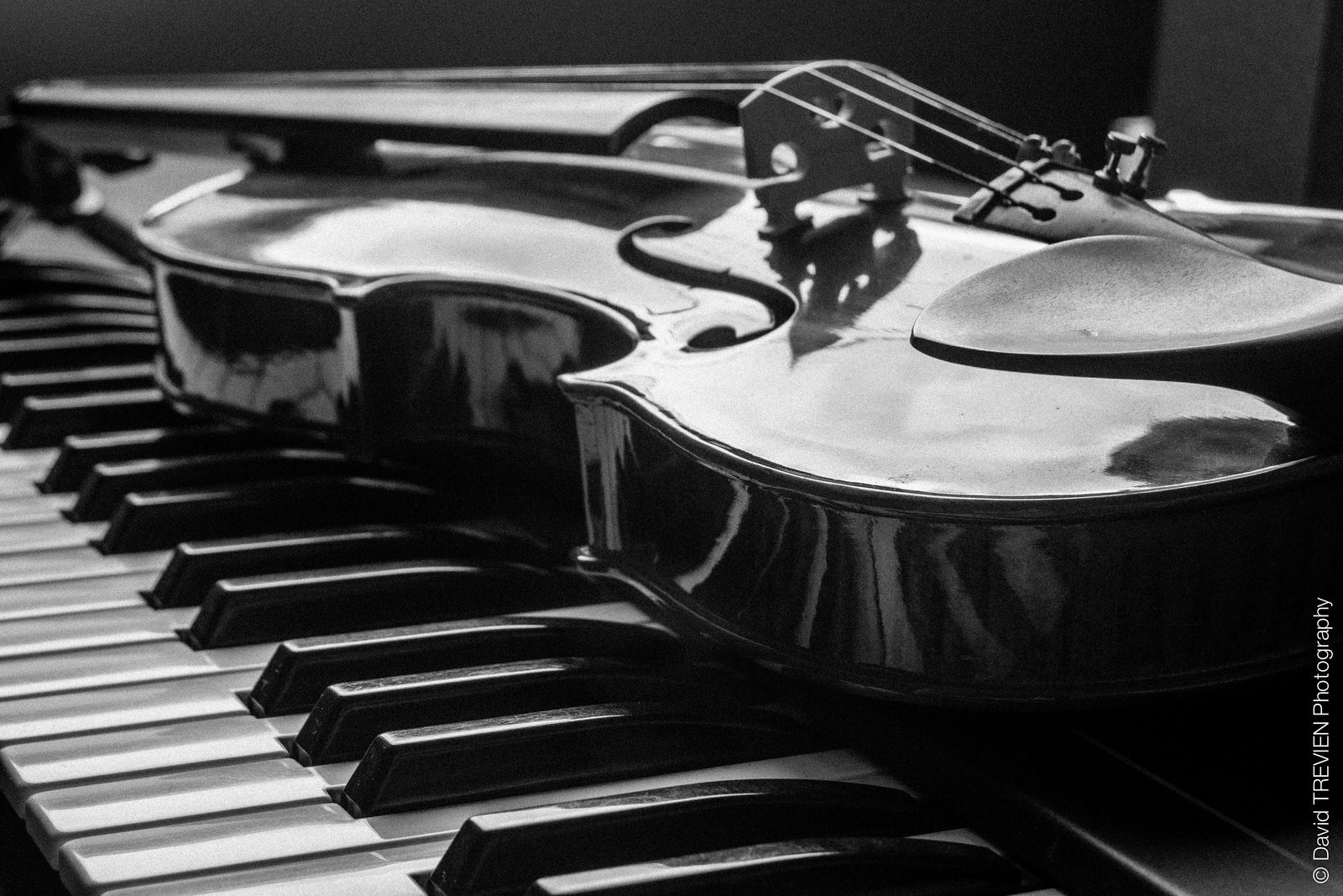 piano and violin black and white wallpaper music is life