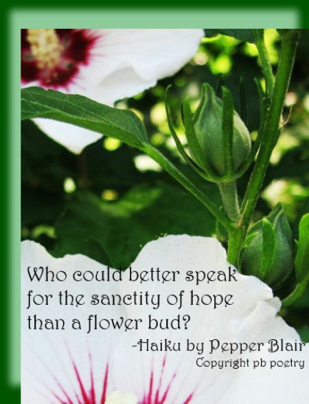 flower bud more quotes love pb poetry com