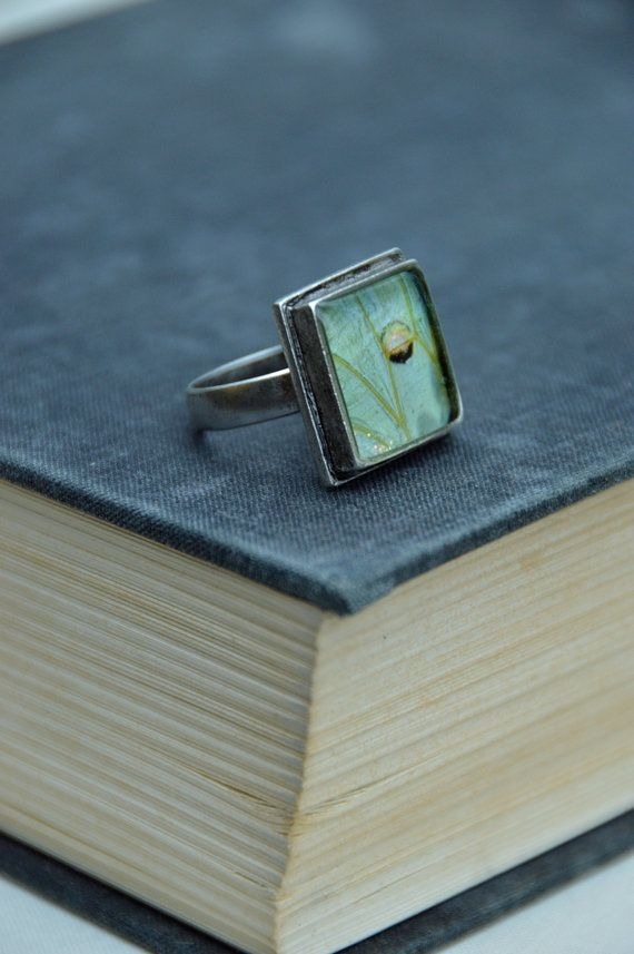 Real luna moth wing ring; One of a kind jewelry, mint green, butterfly jewelry, at www.jadekudzuArt.etsy.com; #EtsyGifts