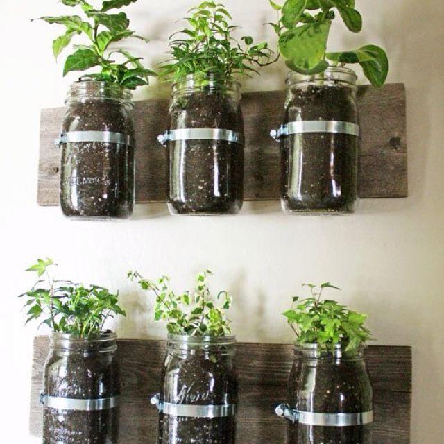 hanging herb garden for the backyard hanging herbs on indoor herb garden diy wall mason jars id=17521