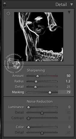 What is masking in lightroom