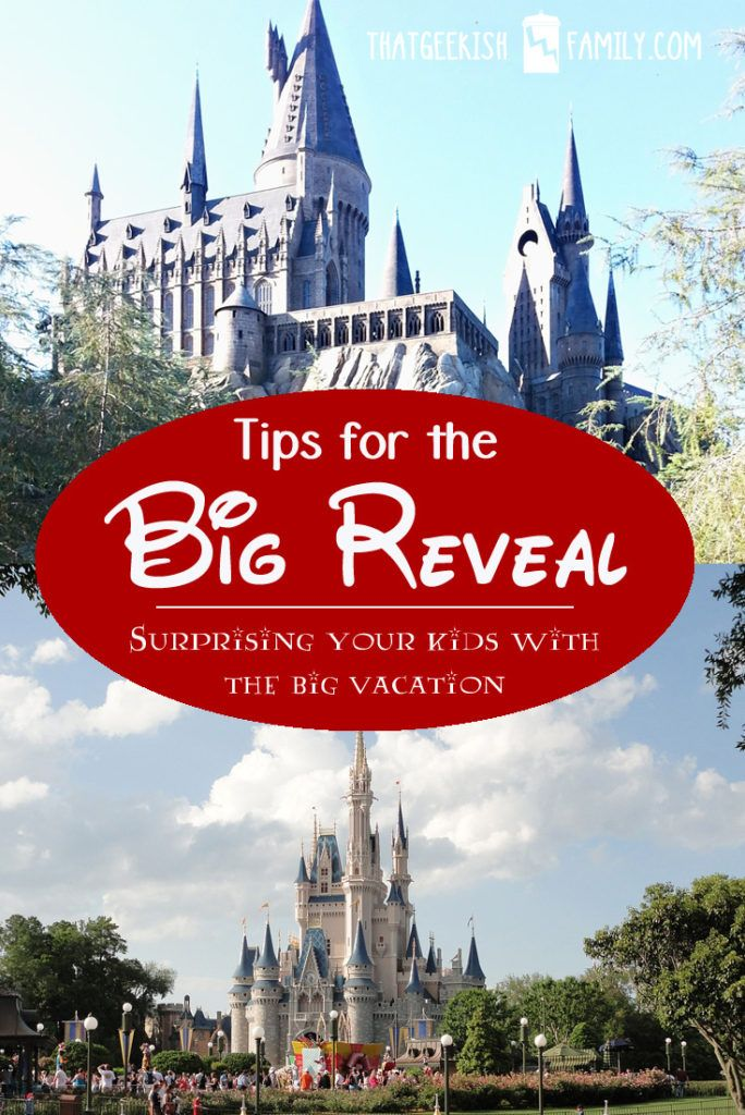 Surprising your kids with a big vacation is such an exciting experience for…