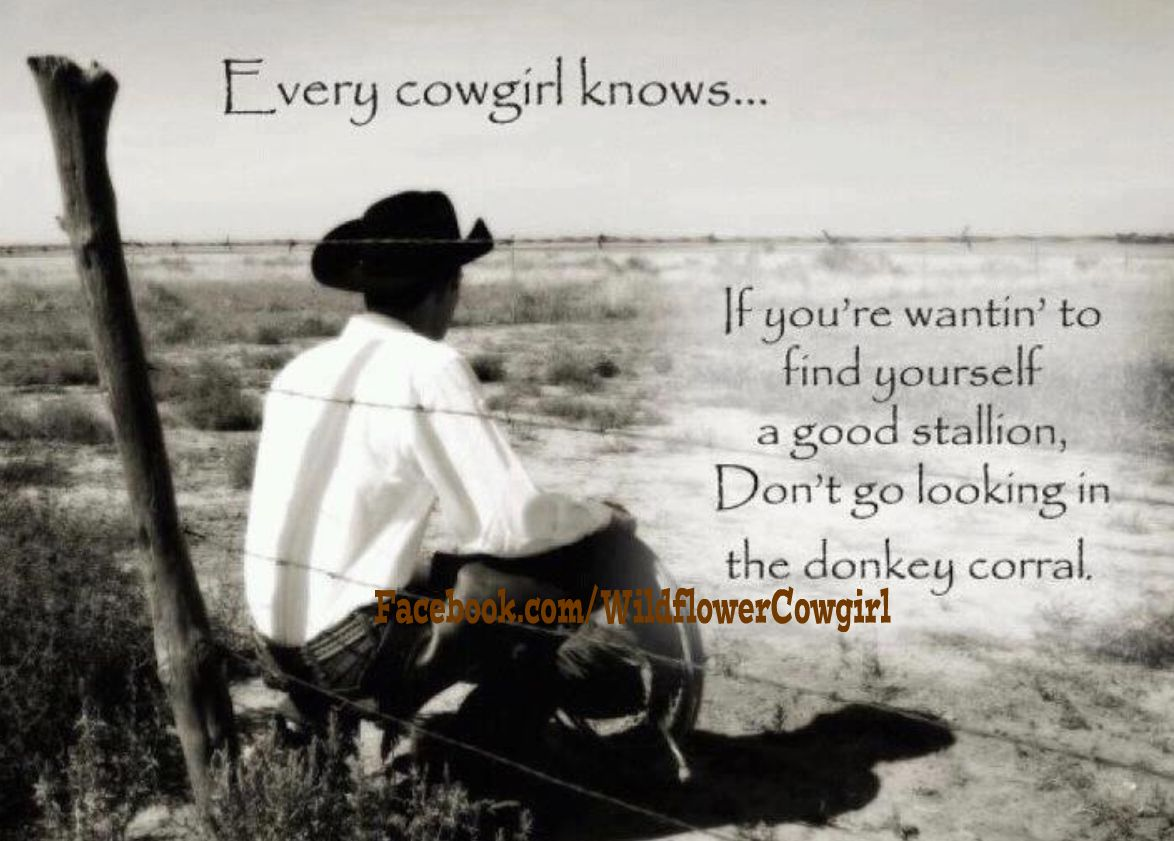 Cowgirl And Cowboy Love QuotesQuotes About Cowboys And Cowgirls In Love