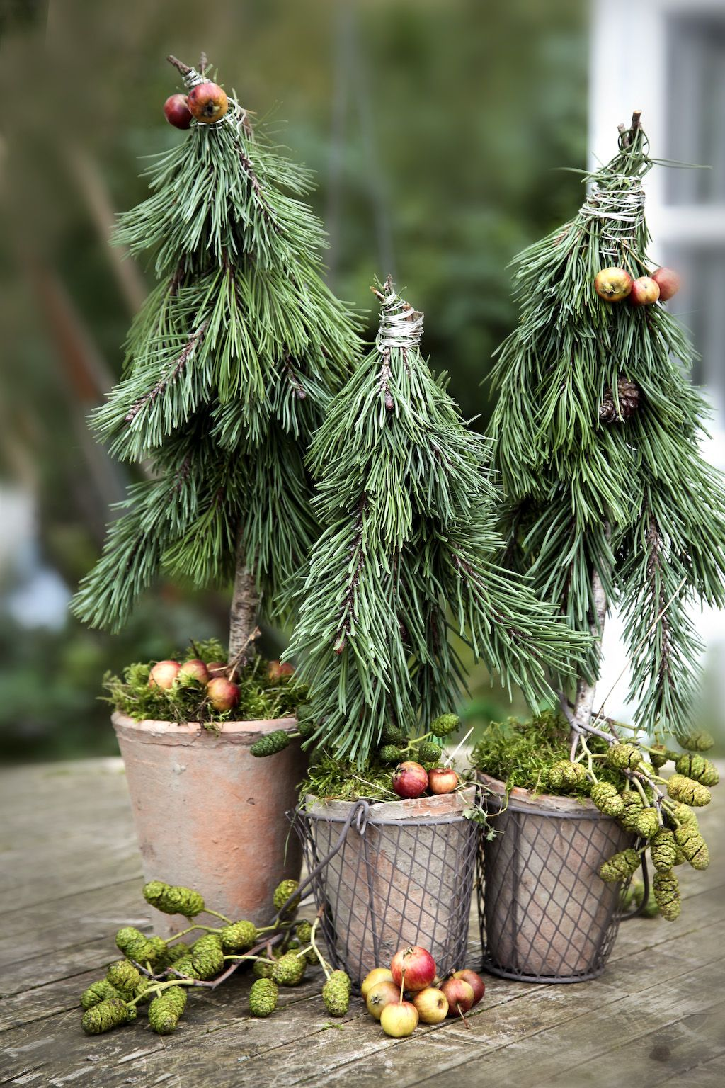Pin by Susanne Schleussner on Creative Ideas | Pinterest | Christmas ...