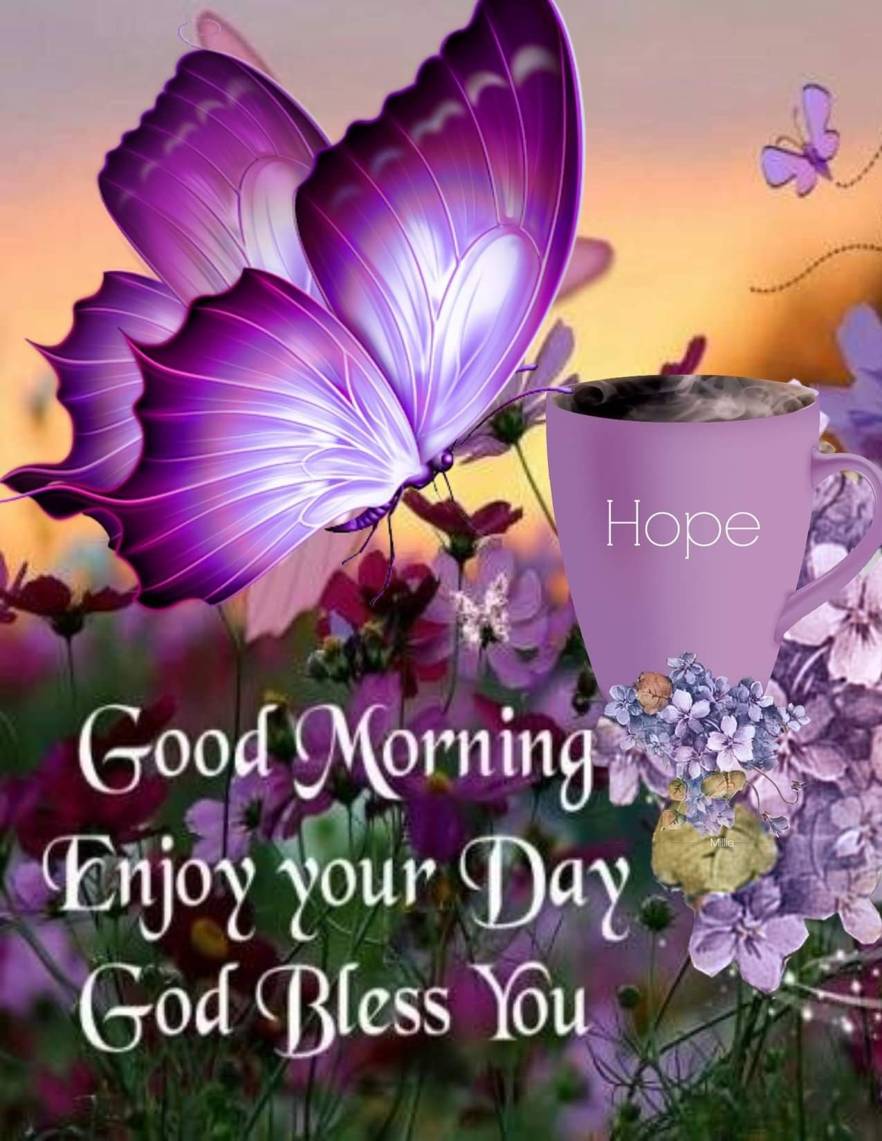 Good Morning God Bless Your Day Images