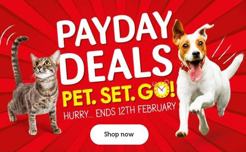 Pets At Home Pet Food Sale Food Animals Pets Pet Supplies