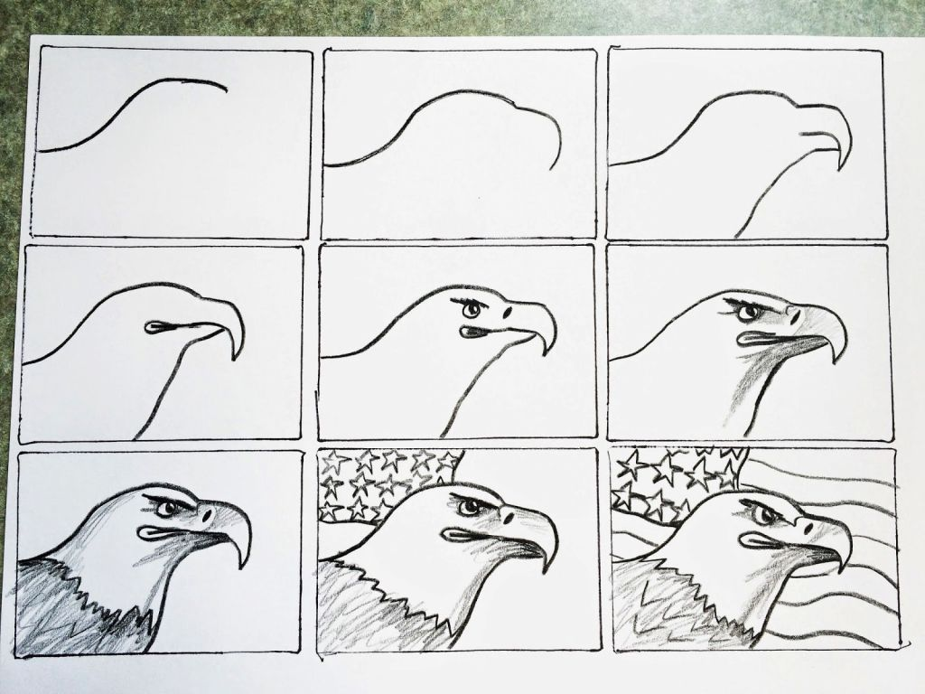 How to draw a bald eagle step by step 1000 images about patriotic art on pinterest statue of liberty