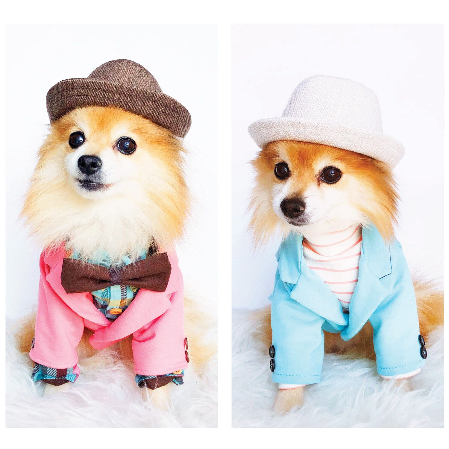 Excited To Share This Item From My Shop Dog Soft Knit Blazers