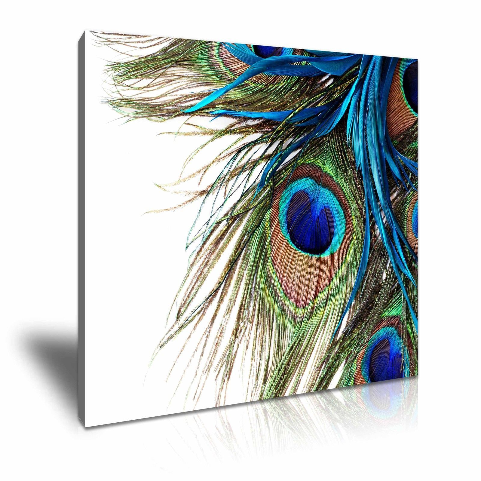 Details About Peacock Feather Canvas Framed Print Wall