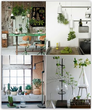 Ikea plant ideas terrariums plants pinterest ikea for Indoor wall planters ikea