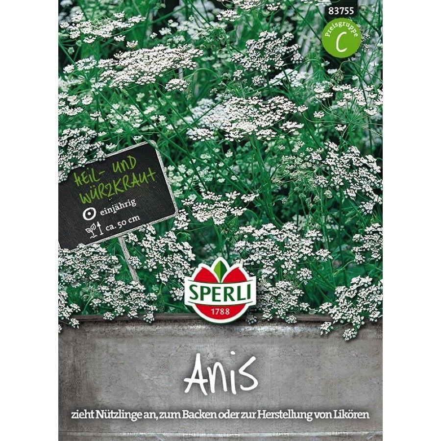 Anis - aktuelles Gartenjahr - Neuheiten online kaufen & bestellen