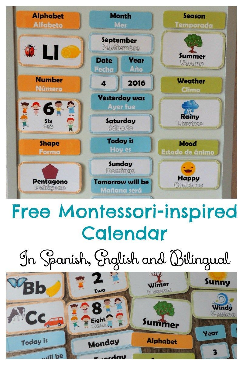 Free Hands On Bilingual Calendar For Children English Spanish