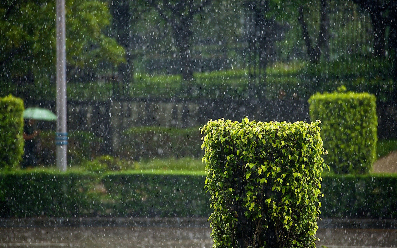 Raining Hd Beautiful Pics Photography Inspiration Nature Rain