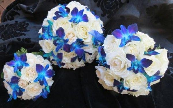 orchidee bleue qui devient blanche