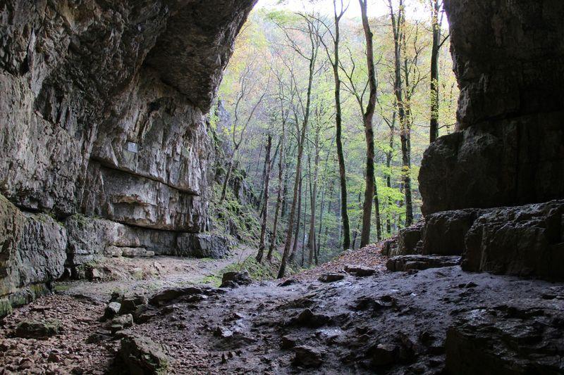 Pin Von Claudia Armbrust Auf Ausflugsziele Tourismus Ausflug Ausflugsziele