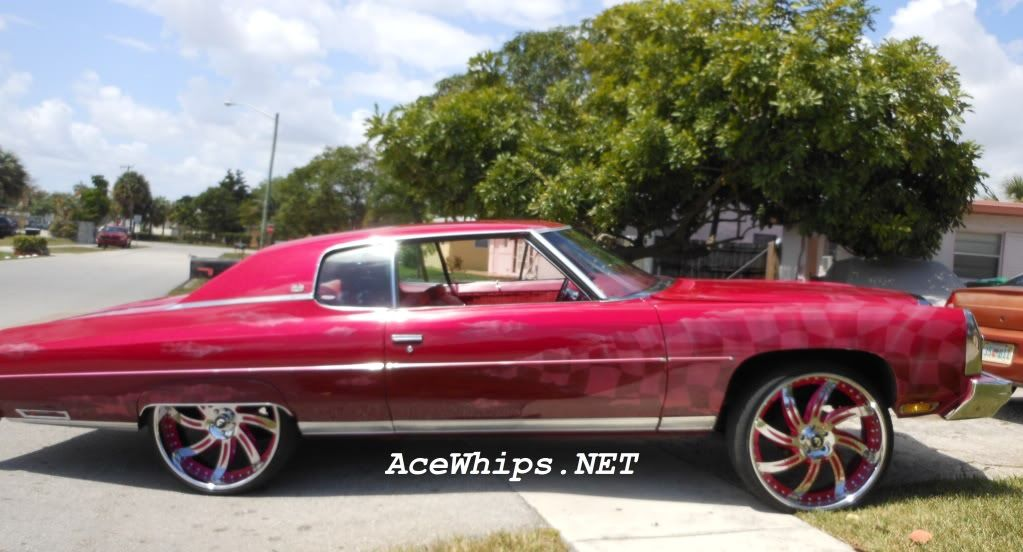 ace whips donks | Ace-1-- AceWhips NET :::: ON SALE- Candy