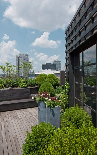 Roof terrace #roof #garden #design