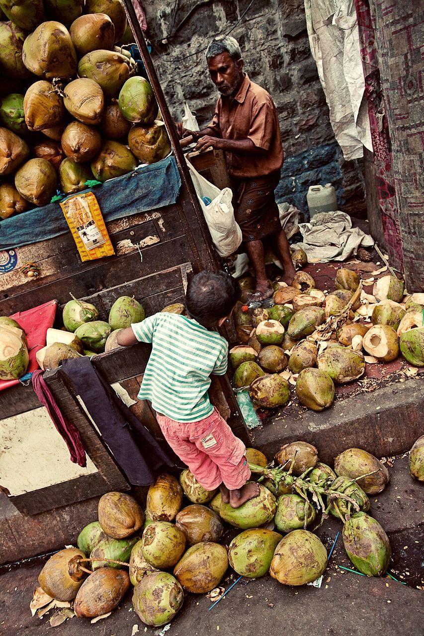 Vendor - India