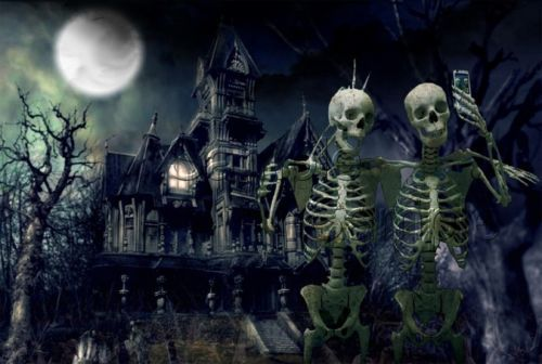 Details About Halloween Haunted House Skeletons Selfies Full Moon