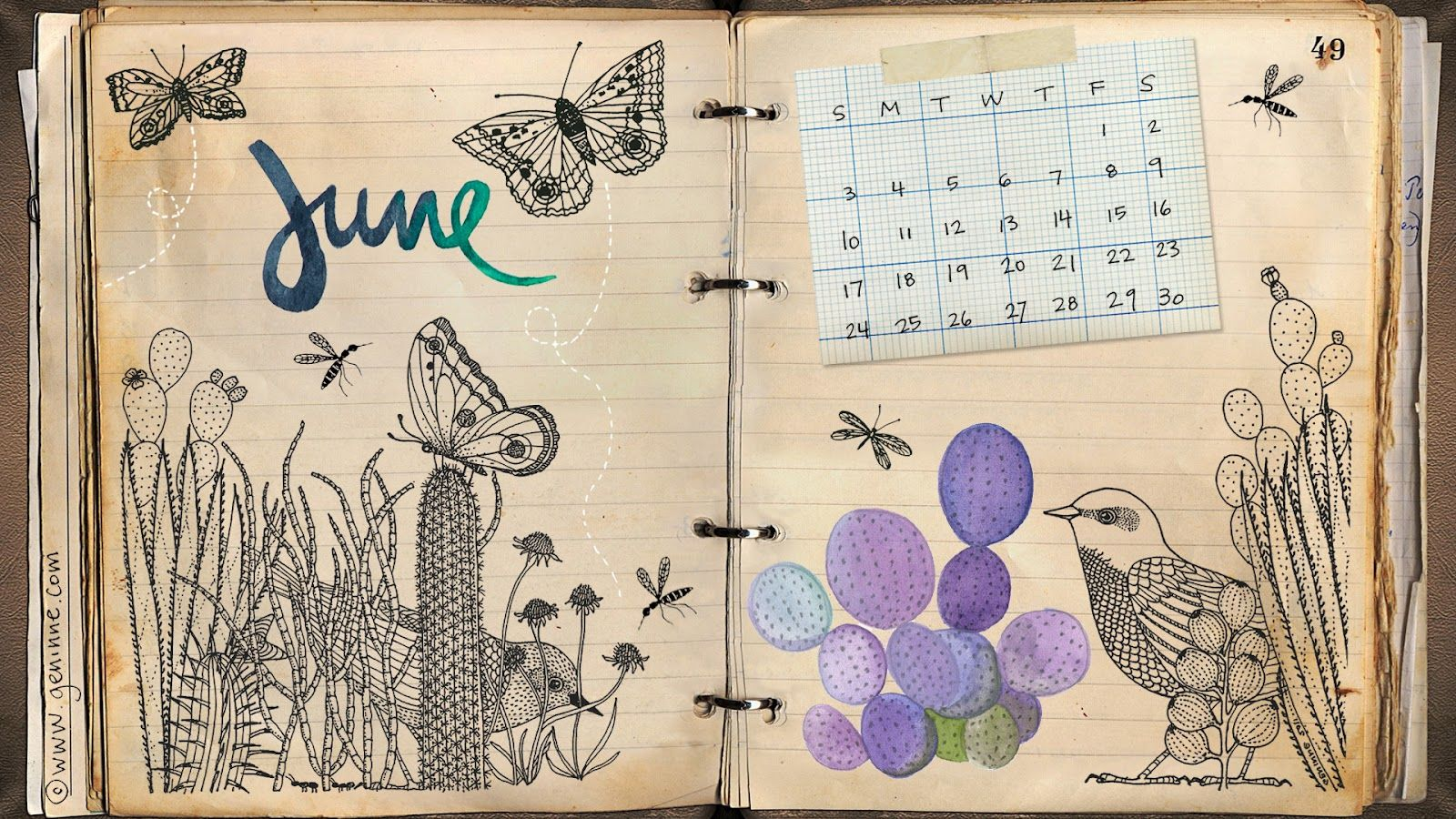 June Calendar • Geninne's Art Blog