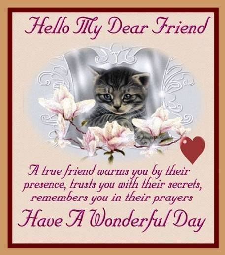 Hello My Dear Friend Have A Wonderful Day Friends Morning