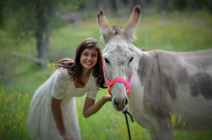 A Girl and Her Donkey - The New York Times