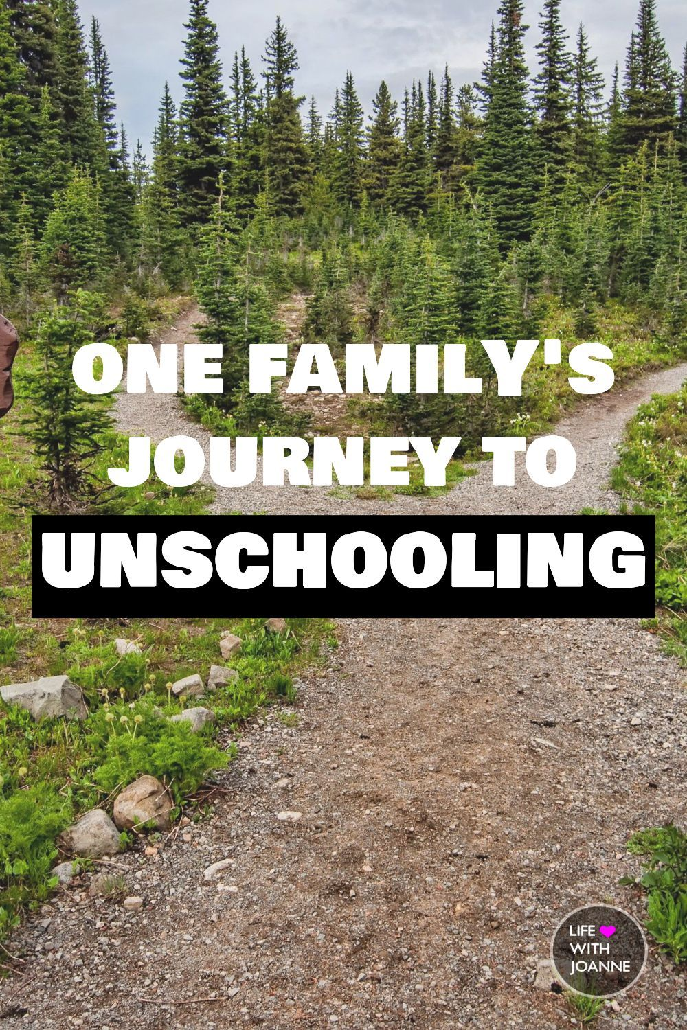 Photo of ONE FAMILY'S JOURNEY TO UNSCHOOLING – Kindergarden