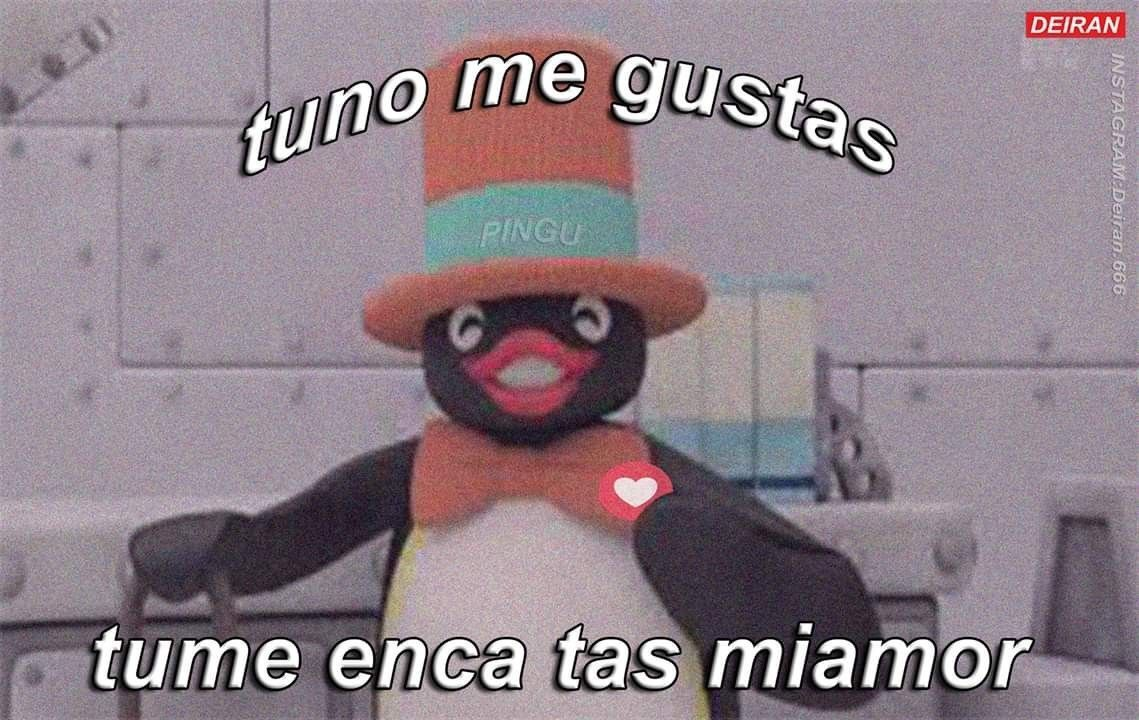 O1 Memes De Pingu En 2020 Memes Divertidos Memes