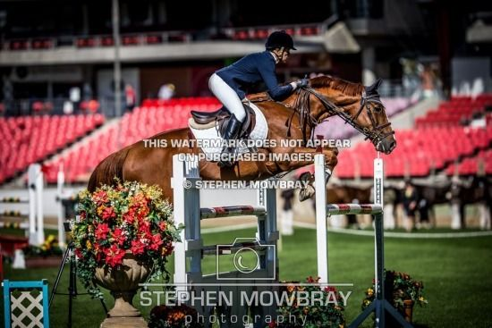 Rodeo Drive LC SYDNEY ROYAL EASTER SHOW 2015