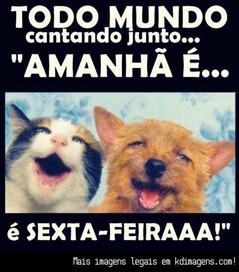 Todo Mundo Cantando Junto Amanhã é Sexta Feira Gato Cat
