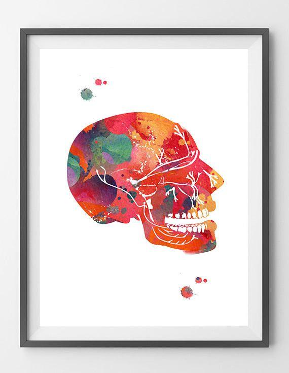 Trigeminal Nerve watercolor print anatomy art poster cranial nerves ...
