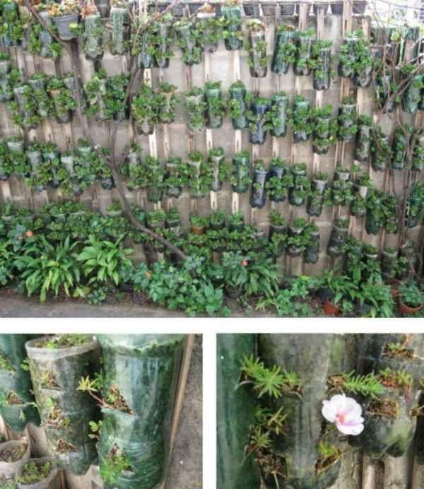 C mo hacer una huerta vertical con botellas huerta for La bioguia jardines
