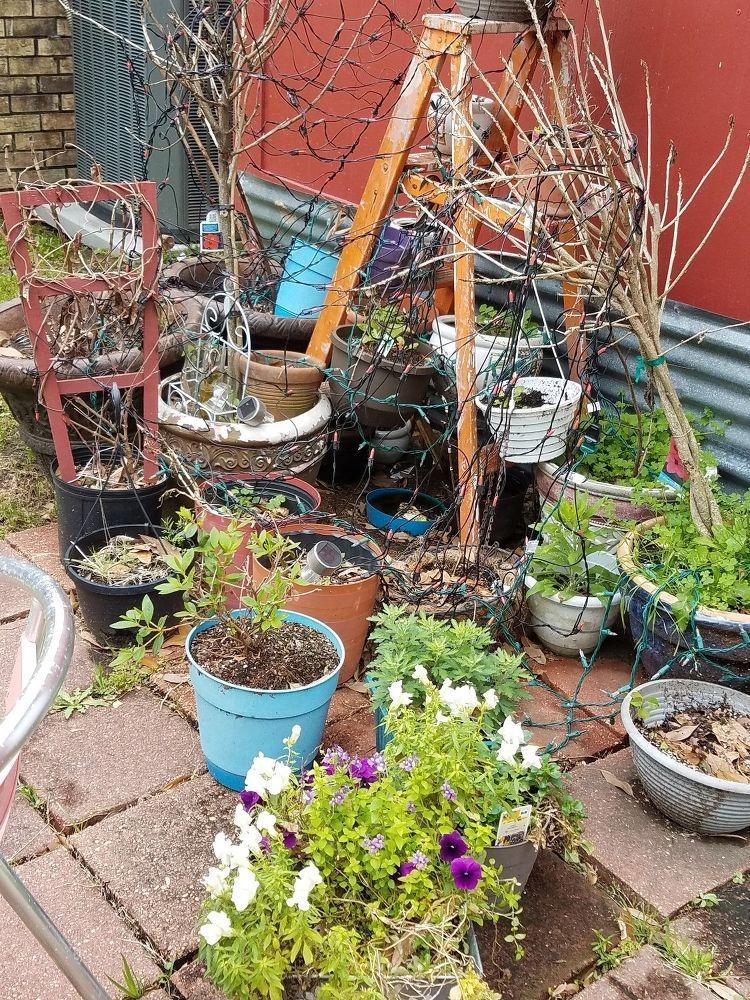 diy curb appeal garden ideas