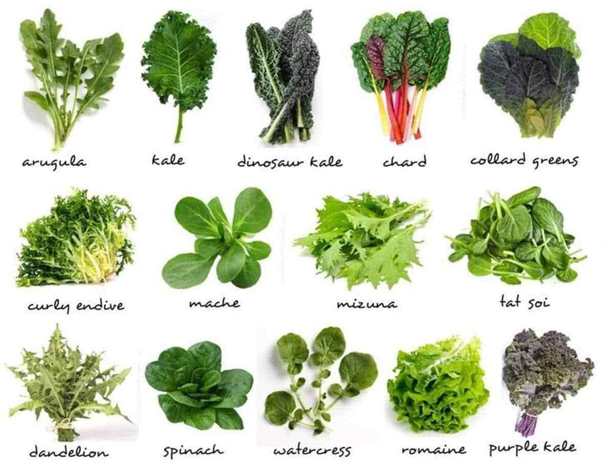 Fruits And Vegetables Vocabulary In English