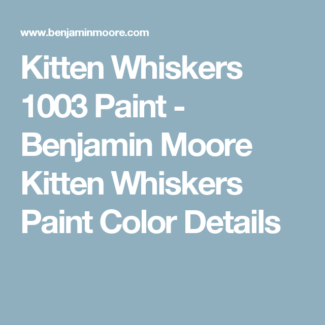 whiskers paint colorKitten Whiskers 1003 Paint  Benjamin Moore Kitten Whiskers Paint